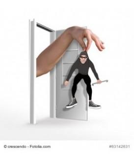 Alarmanlage - Frühwarnsystem - in 30 sec ist Ihr Haus sicher
