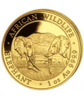1 x 1 oz Gold Somalia Elefant 2020