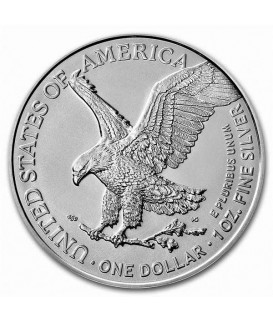 1 x 1 Oz Silber American Eagle