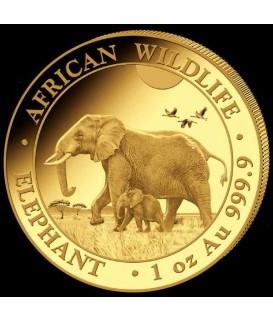 1 x 1 oz Gold Somalia Elefant 2022