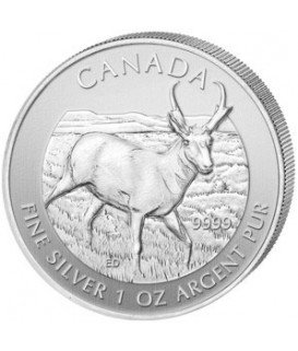 1 x 1 Oz Silber Wildlife Antilope 2013