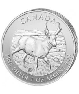 1 x 1 Oz Silber Wildlife Antilope 2013