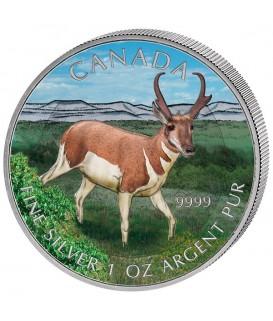1 x 1 Oz Silber Wildlife Antilope 2013--color