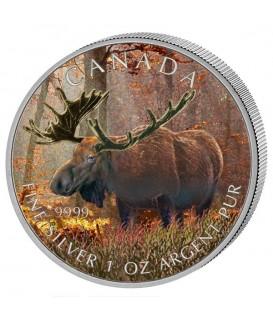 1 x 1 Oz Silber Wildlife Elch 2012--color