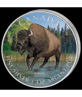1 x 1 Oz Silber Wildlife Bison 2013--color